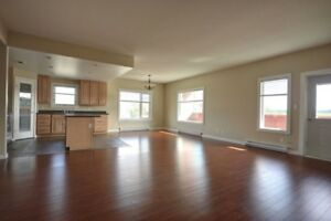 Newer 3 Bedrooms Condo For Sale (Downtown)