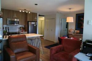 1 Bed 1 Bath Apartment / Condo on 12th Floor For Rent