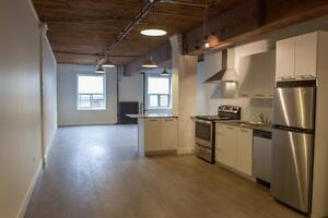 Bachelor-Downtown-Fashion District-Loft-Style- Over 600 SQ. FT.!