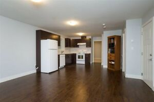 2 bedroom Suite - Newer house - South Surrey / Grandview