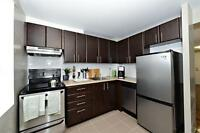 Renovated 2 bedroom! Bright-Spacious. Amazing Value