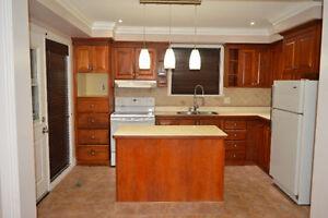 Full house for rent (Main level + Basement)