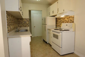 Large, renovated 3 bedroom apartment for rent near NAIT