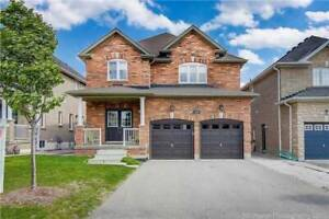 Beautiful 4 bedroom Available March for Rent in Vaughan