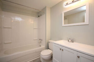 Newly Renovated 2 Bedroom (All Inclusive) Unit in Quiet Building Cambridge Kitchener Area image 5