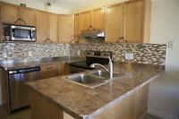 KITCHEN RENOVATIONS,CABINETS INSTALL, BATHROOM UPGRADE,ASK NOW!