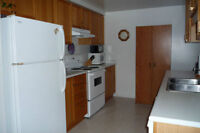 Clean Quiet Furnished Rm in 2 Bdrm Twnhs _Flexible Term - Nov.1