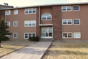 Modern 1 Bedroom Condo ~ Furnished ~ Close to HSC, MUN St. John's Newfoundland image 10