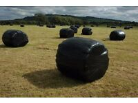 11 x Round Large bales of good Silage, Ready for collection, £120 the lot, Cookstown