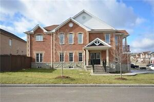 Gorgeous detached home in south Georgetown for rent