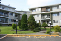 Newly Renovated, 1 Bdrm, Adult Oriented Apt in Central Nanaimo