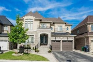 Fully Upgraded Modern House In Best Location Of Brampton East