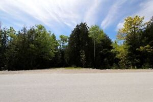 83.5Ac. Land for you to roam! - Presented By Ashley Barker