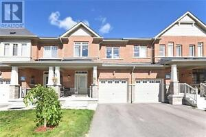 151 Windrow St Richmond Hill Ontario Beautiful House for sale!
