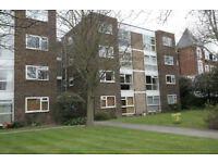 SPACIOUS and refurbished 1-Bed Flat, Central Beckenham, 5 mins walk from 2 stations and tram