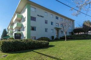 Bachelor available at 1303 Eighth Avenue, New Westminster