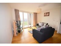 Bright and spacious 2 bed modern flat with ensuite access near Granton waterfront available Sept