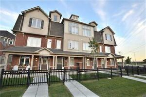 Looking for a Rental in MILTON ?