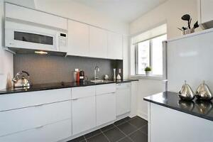 Professional Microwave Installation Service=