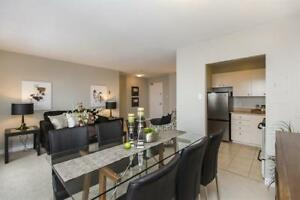 1 BR- Byward Market - Newly Renovated- Great Value!