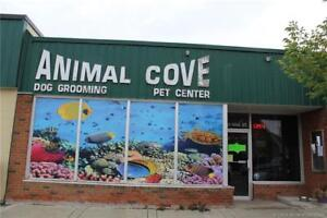 Animal Cove Dog Grooming and Pet Center