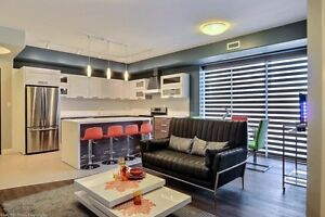 Hyland Place - Bachelor Apartment for Rent