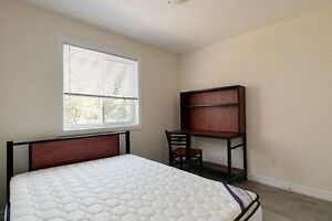 Individual Bedrooms or Group Rates for Students! 5 bed/2 bath Kitchener / Waterloo Kitchener Area image 10