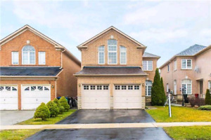 Large house for rent in mississauga