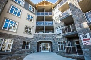 Wascana Park and University, Luxury 2 bed 2 bath Condo For Rent