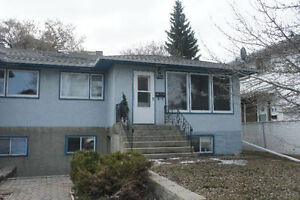 One bedroom basement suite in Bonnie Doon - Available August 1st
