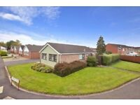 Beautiful corner plot 3 bedroom bungalow for private rent in Galmington, Taunton, TA1 4LH