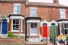 Whole house - 2 bed terrace in Golden Triangle