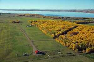 Lots for Sale at Deere Park at Gull Lake