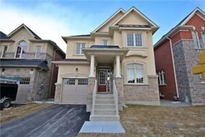 Brand New Home For Lease In Newmarket!
