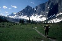 Multi-Day Backcountry Hiking Trip (FREE)
