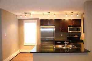Spacious Beautiful Southwest Condo (2 Bedrm/2 Bath) AVAIL OCT 1!