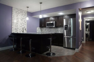 Beautiful basement in Coventry Hills ready to move in