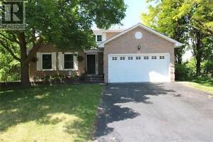 954 Ferndale Cres Newmarket Ontario Home for sale!