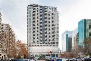 Gorgeous, Spacious 2 Bedroom Penthouse Unit In North York