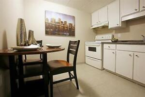 Large Apartment - Downtown - Now Renting!