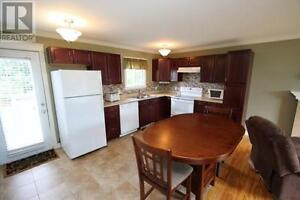 House for rent in Mt pearl St. John's Newfoundland image 3