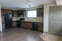 2 Bedroom Lower Level in Westpointe $1100. Avail Now #1954