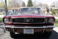 1966 Ford Mustang Coupe 6 Banger FOR SALE