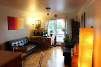 nice appartement available untill june 29