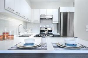 1 month FREE! Fully renovated! Downtown! Pool and terrace