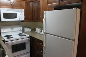 Modern 1 Bedroom Condo ~ Furnished ~ Close to HSC, MUN St. John's Newfoundland image 3