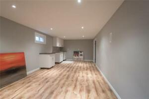 Upgraded 2 bedrooms basement Apartment - Hamilton Mountain