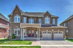 JUST LISTED!! 6 Bedroom Home on the Grand River in Kitchener!