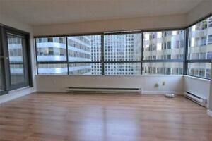 Spacious and immaculate 1 bedroom condo in the heart of downtown