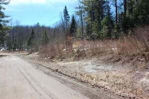 Vacant Lot on Boughner Road, Haliburton Kawartha Lakes Peterborough Area image 7